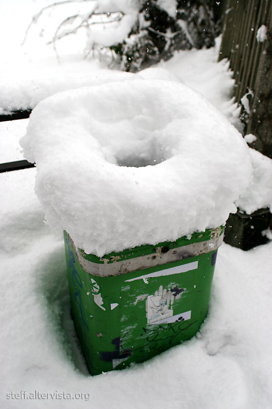 Trashcan or Snowcan?